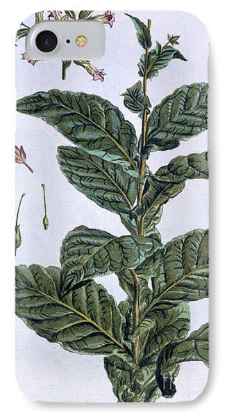 Tobacco Plant IPhone Case by Pierre-Joseph Buchoz
