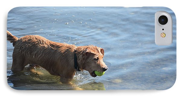 Toller Puppy Dog Playing In Shallow Water IPhone Case by DejaVu Designs