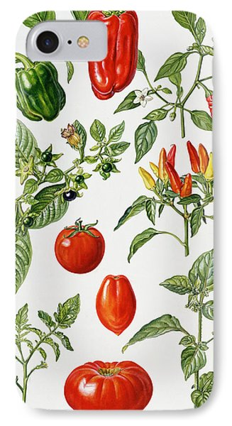 Tomatoes And Related Vegetables IPhone 7 Case by Elizabeth Rice
