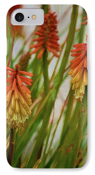 Torch Lily At The Beach IPhone Case by Sandi OReilly