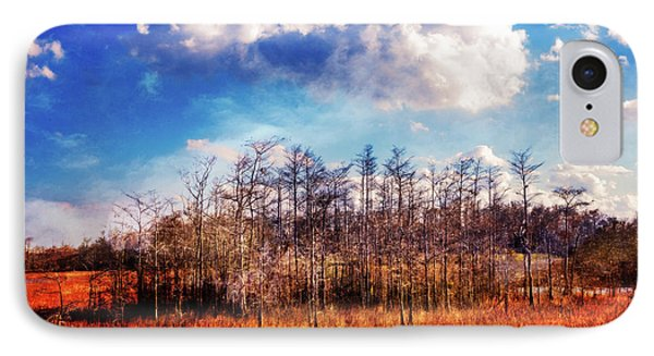 IPhone Case featuring the photograph Touch Of Autumn In The Glades by Debra and Dave Vanderlaan