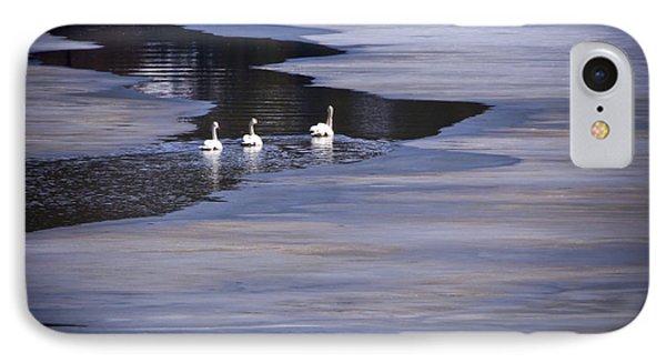 Tourist Swans IPhone Case