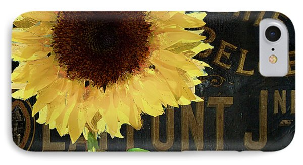 Tournesols Yellow Sunflowers IPhone Case by Mindy Sommers