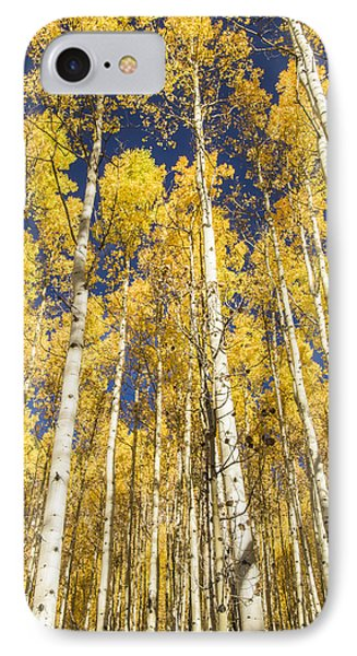 IPhone Case featuring the photograph Towering Aspens by Phyllis Peterson