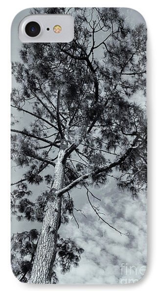 IPhone Case featuring the photograph Towering by Linda Lees