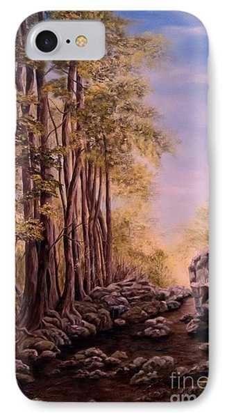 Trail To The Falls IPhone Case by Anna-maria Dickinson