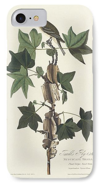 Flycatcher iPhone 7 Case - Traill's Flycatcher by Dreyer Wildlife Print Collections