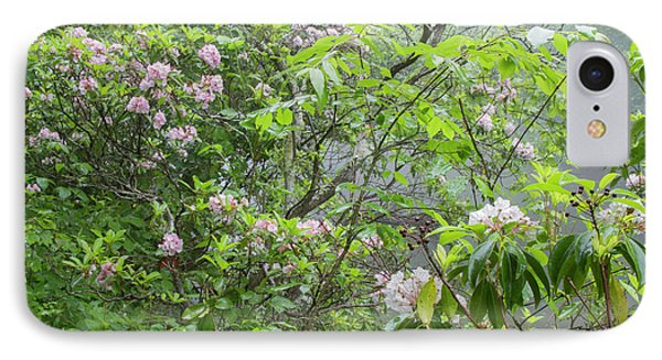IPhone Case featuring the photograph Tranquil Nature by Chris Scroggins