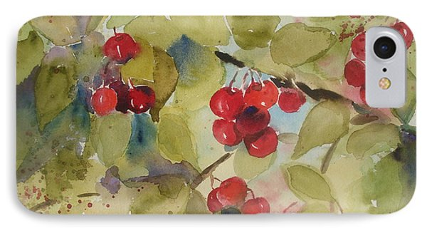 IPhone Case featuring the painting Traverse City Cherries by Sandra Strohschein