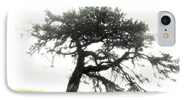 IPhone Case featuring the photograph Tree by Alex Grichenko