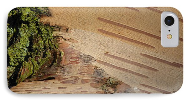 Tree Bark With Lichen IPhone Case by Margaret Brooks