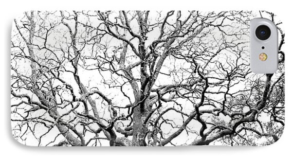 Tree Branches Phone Case by Gaspar Avila