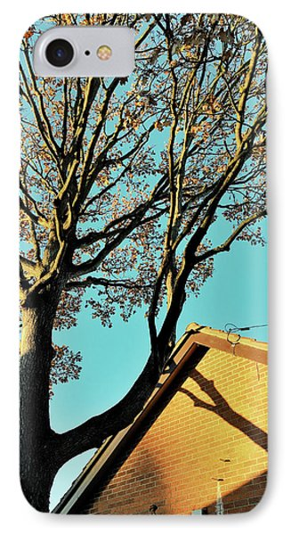 Tree Branches Pattern IPhone Case by Tom Gowanlock