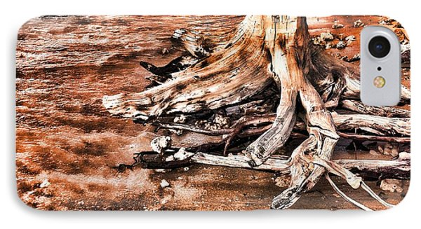 Tree By The Ocean 1 IPhone Case