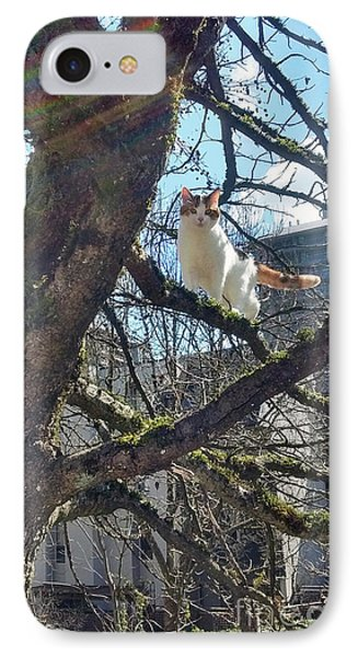 IPhone Case featuring the photograph Tree Climber by Bill Thomson