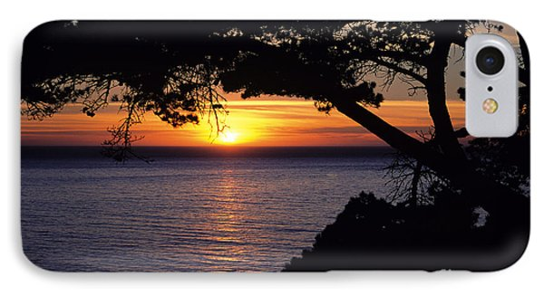 Tree Framing Seascape Sunset Phone Case by Ali ONeal - Printscapes