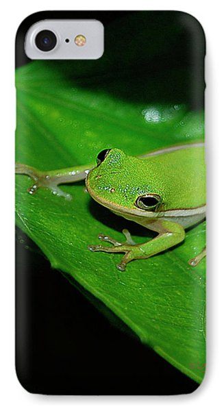 Tree Frog On Hibiscus Leaf IPhone Case by DigiArt Diaries by Vicky B Fuller