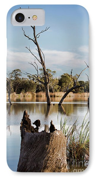 IPhone Case featuring the photograph Tree Image by Douglas Barnard