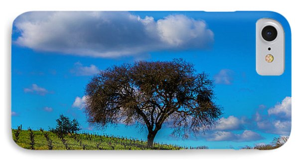 Tree In Vineyard With Clouds IPhone Case by Garry Gay