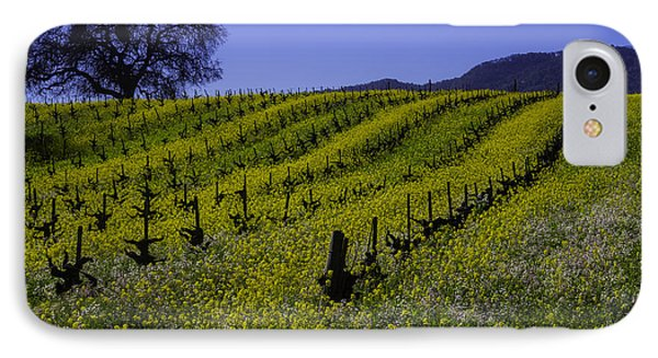 Tree  In Vineyards IPhone Case by Garry Gay