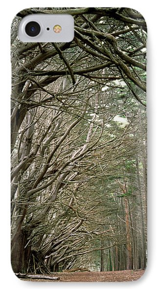 IPhone Case featuring the photograph Tree Lane by Art Shimamura