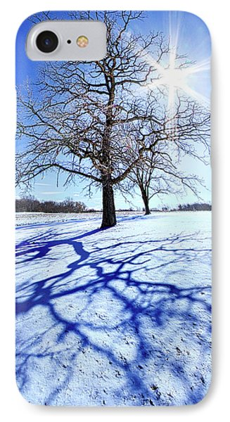 IPhone Case featuring the photograph Tree Light by Phil Koch