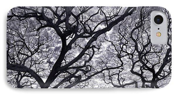 Tree Lightening IPhone Case by Sean Davey