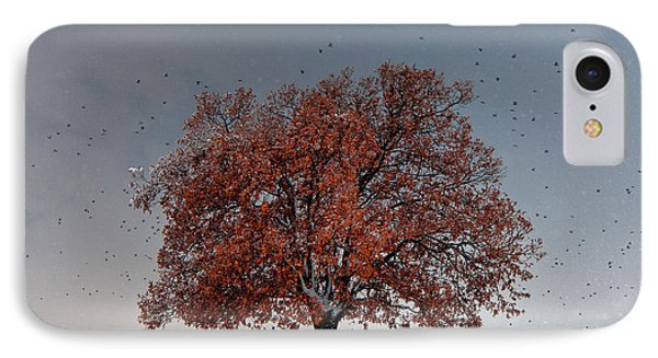 Tree Of Life IPhone Case by Evgeni Dinev