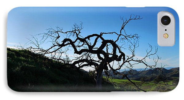 IPhone Case featuring the photograph Tree Of Light - Landscape by Matt Harang