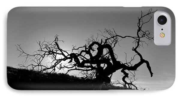 IPhone Case featuring the photograph Tree Of Light Silhouette Hillside - Black And White  by Matt Harang