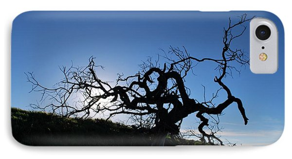 IPhone Case featuring the photograph Tree Of Light Silhouette Hillside by Matt Harang
