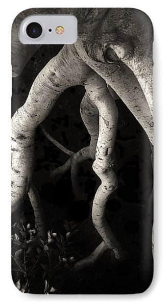 Tree On Mission Street IPhone Case by Gary Warnimont