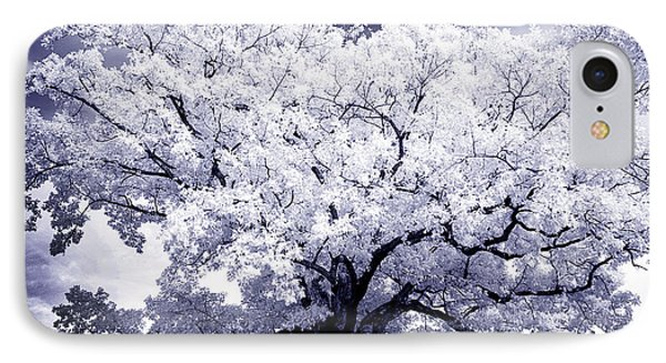 IPhone Case featuring the photograph Tree by Paul W Faust - Impressions of Light
