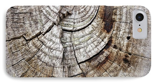 IPhone Case featuring the photograph Tree Rings - Photography by Ann Powell