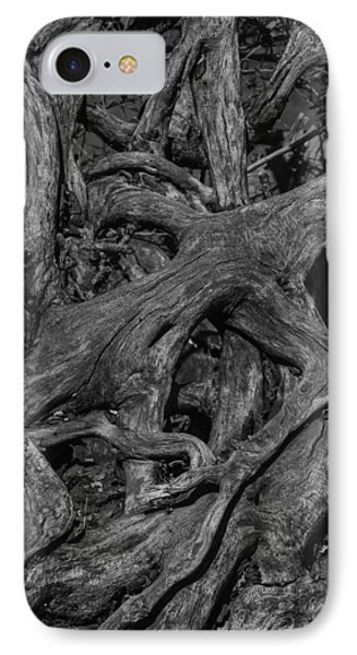 Tree Roots Black And White IPhone Case by Garry Gay