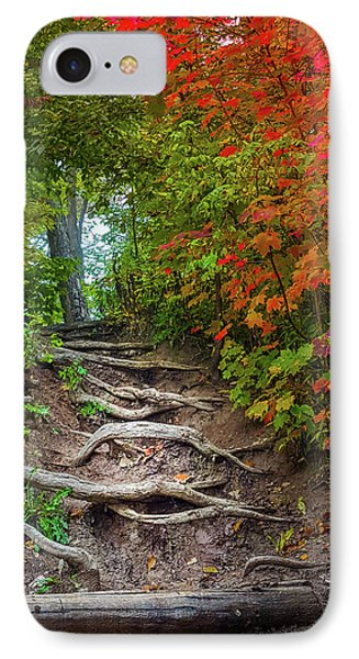Tree Roots On A Trail IPhone Case by Art Spectrum