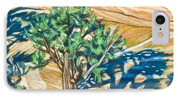 Tree Shadow On Slickrock - Lwtss IPhone Case by Lewis Williams OFS