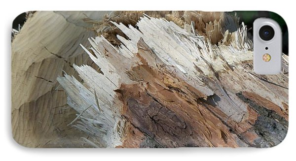 Tree Stump IPhone Case