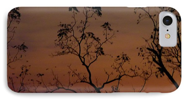 IPhone Case featuring the photograph Tree Top After Sunset by Donald C Morgan