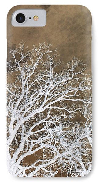 IPhone Case featuring the photograph Tree Top Right Diptych by Ellen Barron O'Reilly