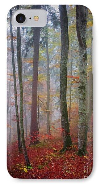 Tree Trunks In Fog IPhone Case by Elena Elisseeva