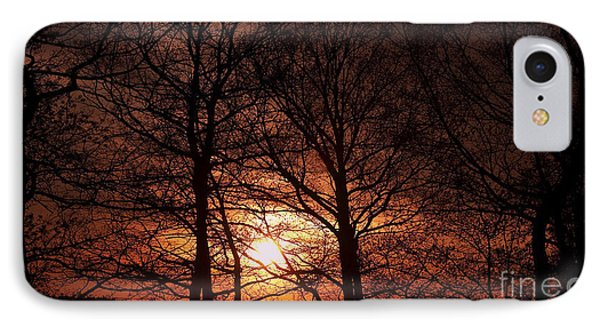 Trees At Sunset Phone Case by Michal Boubin