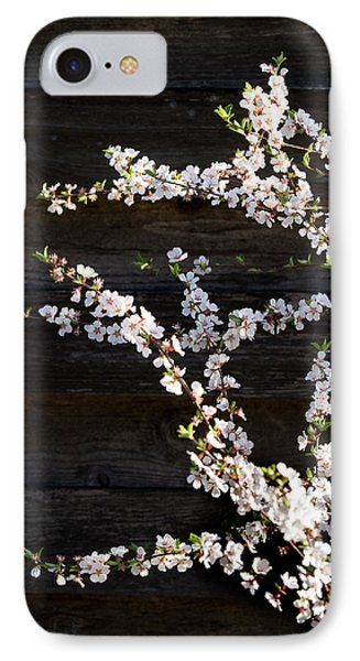 Trees - Blooming Flowers IPhone Case by Donald Erickson