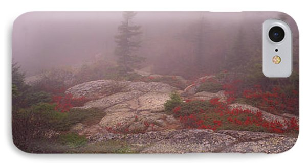 Trees Covered With Fog, Cadillac IPhone Case