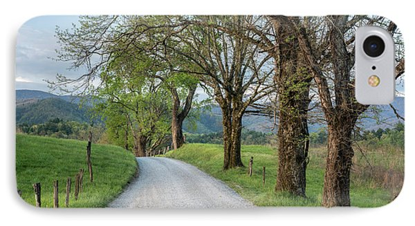 Trees On A Path IPhone Case by Jon Glaser