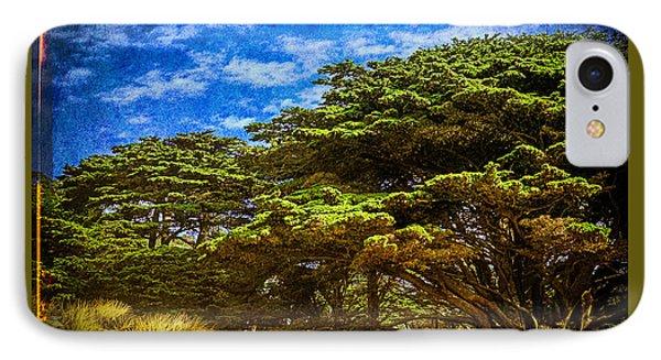 Trees On An Oregon Beach IPhone Case by John Brink