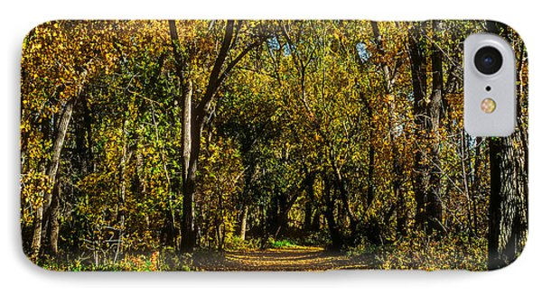 Trees Over A Path Through The Woods In Fall Color IPhone Case