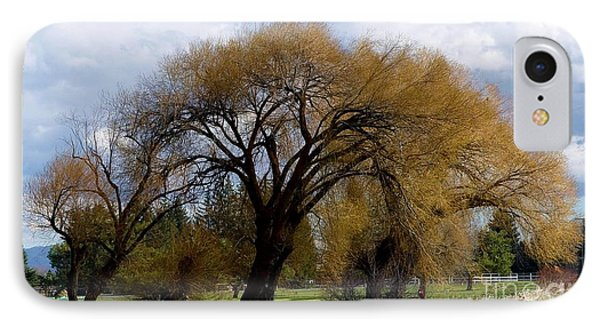 Trees IPhone Case by Ron Bissett