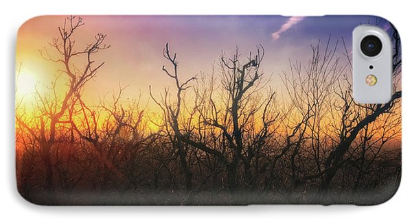 Treetop Silhouette - Sunset At Lapham Peak #1 IPhone Case by Jennifer Rondinelli Reilly - Fine Art Photography