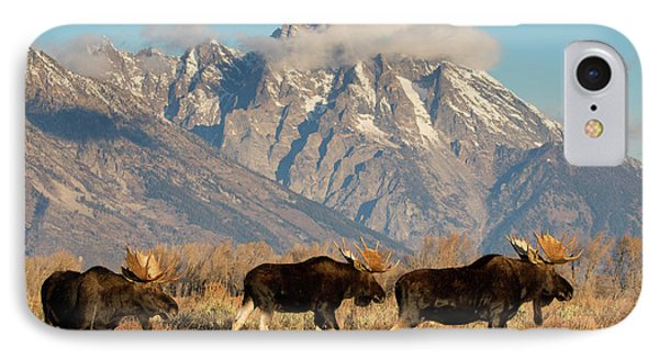 Tres Amigos IPhone Case by Aaron Whittemore